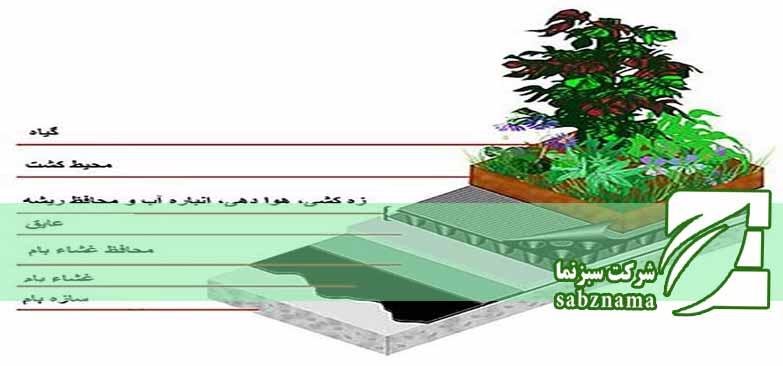 محوطه سازی بام سر سبز